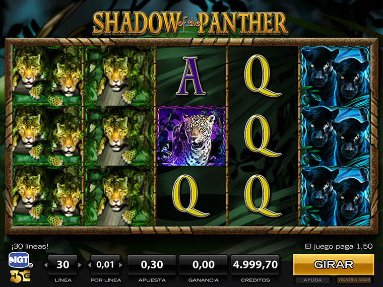 ¡Shadow of the Panther en acción!